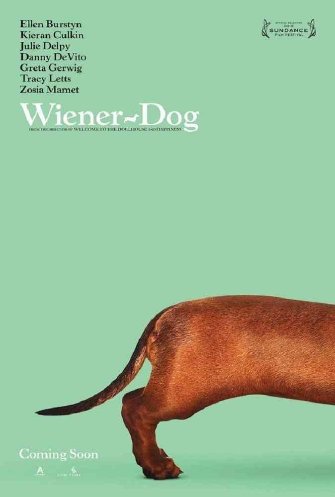 22-wiener-dog-4-5